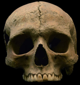 Researchers found genomic evidence of malaria in 2,000-year-old human remains.